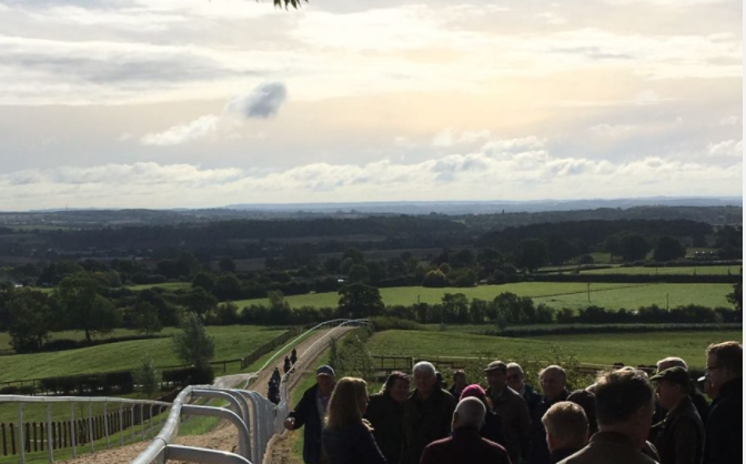Trainers Survey – we want your feedback – Racecourse Association